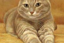 Коты, котята, кошки, котики