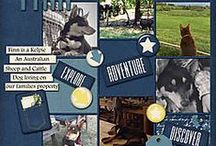 Scrapbooking with Digital Pockets / Pocket Scrapbooking Layouts and Templates from a variety of sites