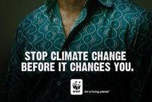ONG / Campagne publicitaire de sensibilisation du public sur l'environnement, la préservation des espèces protégées,  la santé ...