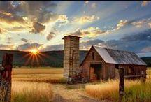 Barns and Sheds / Old Barns, Sheds, Farm Animals/Barns, Etc...