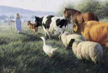 Animals ~ Farm Animals / Farm Animals that you can find on a Farm in the Country - Horses, Cows, Sheep, Donkeys, Rabbits, etc...
