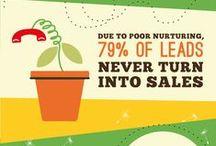 Lead Nurturing / Lead Generation, Lead Nurturing