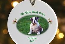 Christmas for Dogs / Christmas gift ideas, costumes, and more for dogs