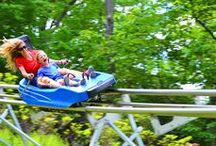Mountain Coaster / Come experience zooming down the mountain like never before on the Mountain Coaster! Camelback Mountain Adventures' signature, 4500' steel-track Mountain Coaster cruises through the trees and down the steep slopes of Camelback. The Mountain Coaster requires no experience - just an adventurous attitude and a readiness to smile until your cheeks hurt. This is a mountain memory you surely don't want to miss.