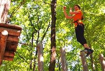 TreeTops Adventure Course / A day in the trees at Camelback Mountain Adventures is all about fun, challenging yourself and unleashing your inner monkey! Come out and experience a unique adventure that's perfect for family and friends to enjoy together, and discover the beauty of the Poconos from the lofty heights of our TreeTops Adventure Course!