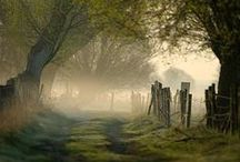 UK  / by Sandra Prado