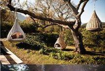 doğa severler buraya...naturel living platform.nature lovers here / contack,,,,akasya.asya2017@yandex.com the good people of the world
