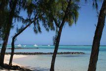Île Maurice / Tableau d'inspiration pour un voyage à l'île Maurice