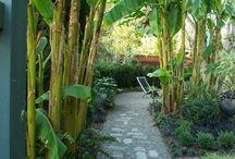 Entrée de jardin, maison mitoyenne