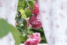Rose Cottage / .