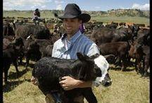 Ranching Stuff
