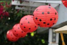 Ladybug Birthday / Ladybug party ideas