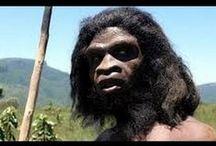 documentales / Nuestros ancestros, Prehistoria