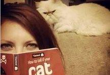 Kediler ve Kitaplar