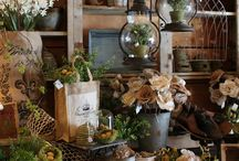 Vignettes for store