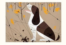Charley Harper Art / by Laura Drinnin Smith