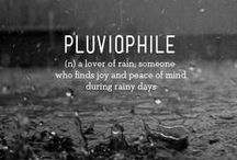 Pluviophile: Love of Rain / Some people walk in the rain, others just get wet. ~ Roger Miller