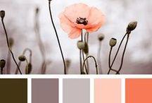 Color palettes / Color palette inspiration