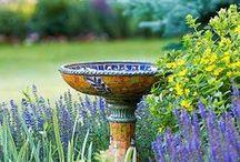 Googoo For #Gardens / Fabulous, Gorgeous, Wonderful Gardens. Garden designs I love / by Ilona's Garden