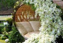 Idea Garden- Green House - Conservatory / giardini e orti  in luce