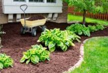 Project How-Tos / Keep your yard looking great all year long with these project ideas and landscaping tips.