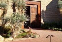 @ the Gardens / Favorite Spots at Tucson Botanical Gardens
