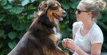 Celebs With Their Dogs