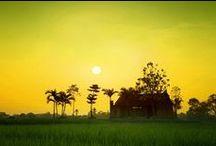 ✈ Viaggi in Viet Nam / Asiatica Travel è un tour operator privato fondato nel 2001 ad Hanoi, in Vietnam. Proponiamo viaggi in Vietnam, Laos e Cambogia completamente personalizzati. Vi presentiamo le foto bellissime del Viet Nam in questa tavola. Se volete avere le esperienze memorabili per il Viet Nam o un viaggio confortevole con vostri amici, vi preghiamo di visitare il nostro sitoweb : http://viaggi.asiatica.com/. Grazie e bevenuti a Viet Nam!