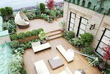 Dreamy terraces