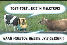 Afrikaans - my Moedertaal