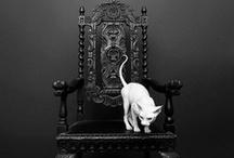 Extravagant & Restored Chairs
