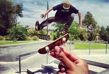 Skateboard / Skateboard