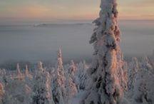 Lapland / Een voorverkenning van Lapland. Overweldigende natuur en genieten van veel stilte en licht. Rijden met husky's of rendieren is een fantastische ervaring!