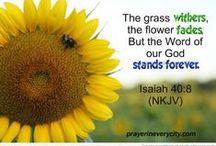 Isaiah / Favorite verses from Isaiah