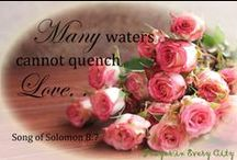 Song of Solomon / Scriptures from Song of Solomon