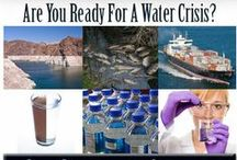 Food And Water Survival / Food & water survival, solutions and safety precautions.