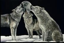 Wolves / by Raechel H