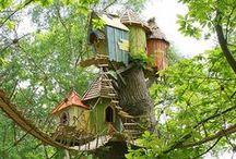 tree house - casa sull'albero