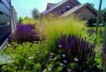 Pozdravy z našich záhrad / Každá záhrada ktorú sme zrealizovali je odzrkadlením predstavy klienta a našich nápadov....