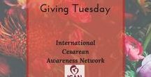Giving Tuesday / A Global Day of Giving Back #givingtuesday