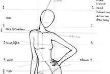 Modèles et proportions