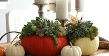 Thanksgiving + Fall Harvest Entertaining / This board contains ideas for Thanksgiving and Fall gatherings. Tips on seasonal decorating for fall, setting the table for dinner and my favorite looks for fall celebrations.
