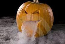 Halloweeen/Fall  / by Jess Kirk-Barker