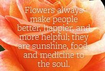 Garden Inspiration / Some inspiration for your garden oasis.