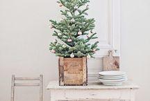 Christmas / Ideas