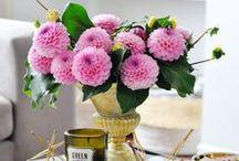 florals + succulents