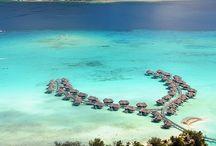 Bora Bora Beaches / ⛵️🚣🏊🏄🍷🍸🍹 / by Tina Darigo