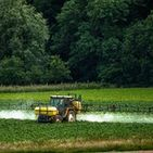 GMOs and Pesticides / GMO's and pesticides and health impacts