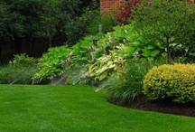 Landscaping Ideas / Tips to making your home and gardens look amazing.
