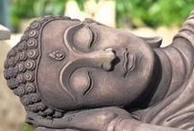 Buddhism feelings / by Donna